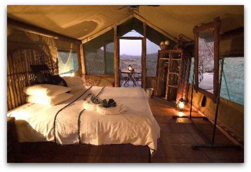 african safari decor - Safari Decor